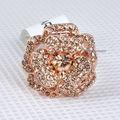 Elegante rosa anillo con forma totalmente de diferentes de visualización de diseño de champán R3136