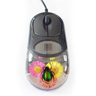 Factory Direct Quality Assurance Office Use Real Bug Series Optical Mouse MB10S06