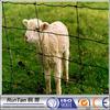 Produttore di porcellana a buon mercato ovine e caprine recinzione(OEM& odm)