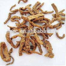 Chinese Low Price Good Quality 100% Natural dry polygonatum odoratum
