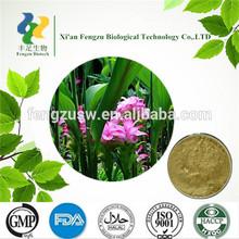 Chinese Herbal Extract Zedoary turmeric extract