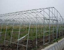 31. Polycarbonate professional Top Build garden green house for vegetable/fruit