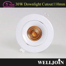 Professional Adjustable 7W LED COB ip65 outdoor led down light