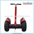 Più costo- Efficace buona qualità mypet scooter elettrico