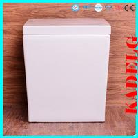 unit bathroom funiture set ceramic technique elegant appearance shower toilet 2389B