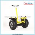 Più costo- Efficace sé balancng scooter, whell uno scooter elettrico con ce