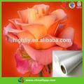 2014 nuevo diseño china alibaba adhesivo de los pp pp etiqueta del rollo de papel de publicidad al aire libre