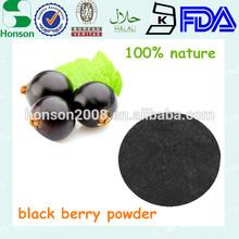 100% nature black berry fruit juice powder