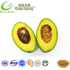 avocado wholesale price, Avocado extract, powder
