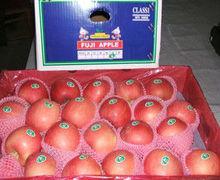 New crop wholesale sweet apple fruit price