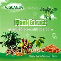 Best Price Natural Bulk Triterpenoid Saponis