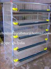 Bıldırcın kafesi otomatik içme sistemi/kuş kafesi, metal kuş kafes tipi ve metal malzeme güvercin( Lydia: 0086 15965977837)