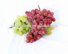 Sweet fresh Red grape/Green grape/Bulk grape