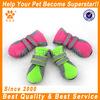 Hot sale colorful dog running socks for summer