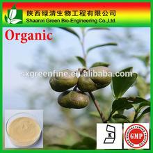Pure organic camellia seeds extract tea saponin, CAS No:8047-15-2