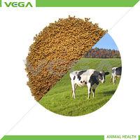 hen BMD granule 15% BMD granule 10% Bacitracin Methylene Disalicylate powder EX our own factory shenzhou