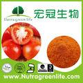 primer grado de nuevo de anuncios en polvo de tomate