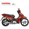 PT110B-5 Popular Mini Cheap New Model Good Quality Moto Bike