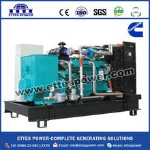 250kva Gas Generator