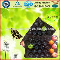 environmental disposable rectangular plastic food tray