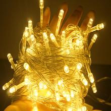 Hot Sale Waterproof Outdoor Decorative LED Light Christmas