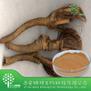 Natural 100% Rhaponticum Carthamoides Extract Ecdysterone 95%