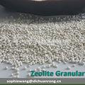 Polvo de zeolita/granular de zeolita natural precio