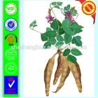 2014 gmp manufacturer female aphrodisiac Puerarin Powder