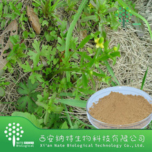 Pure Natural Cats Claw Extract from GMP Manufacturer