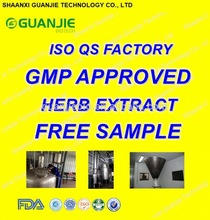 GMP ISO Approved 100% Natural Ginkgo Biloba Leaf Extract Supplier
