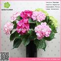 Matériel d'unité centrale pas cher de pétales de fleur d'hortensia artificiel