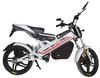 electric bike kit foe sale ZF-FB1
