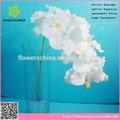 Blanc de soie / fleur de tissu orchidée papillon, Blanc artificielle papillon orchidées