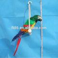 autentico colorato ingrosso unstuffed peloso parlando giocattolo pappagallo