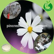 Apigenin 98% powder chamomile apigenin extract