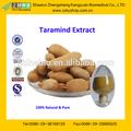certificada gmp fabricante de suministro de alta calidad de extracto de tamarindo