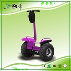 The big power mini personal chariot electric chariot scooter chariot