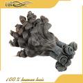 De alta calidad natural de color de cabello virgen de malasia, baratos virgen de malasia y fumi pelo rizo paquetes