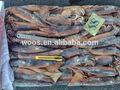 frozen illex argentinus lula tipos de frutos do mar