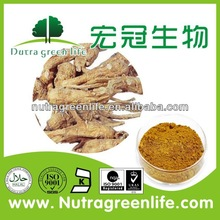 Chinese herb medicine Angelica Root Extract,herb medicine