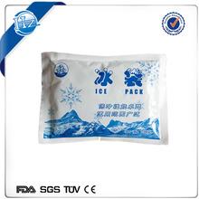 pa/pe plastic bag / cooler to transport food