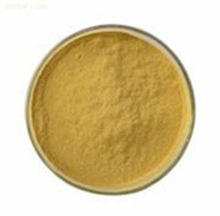 High Quality Cat's Claw Extract / China Manufacturer