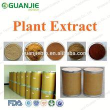 Natural de semillas de cassia alta calidad