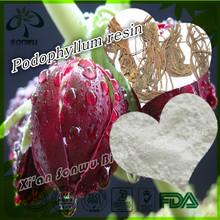 Podophyllum resina pó podofilina cas.: 518-28-5