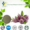 factory price Chinese Herbal Extract Red Clover Extract powder & 98% Biochanin A