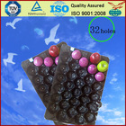 Plastic Tray Liners under Piece Fruit Colorful