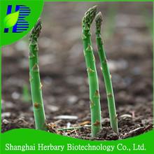 เซี่ยงไฮ้herbaryจัดหาหน่อไม้ฝรั่งเมล็ดสำหรับการเพาะปลูก