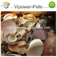 Aquarium Decoration Mix Shells Fish Tank Bottom Conch Home DIY Fishnet Ornaments