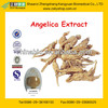 GMP Manufacture Supply Natural Angelica Sinensis Extract
