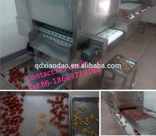 fruit pit machine/cherry pit machine/jujube pit machine